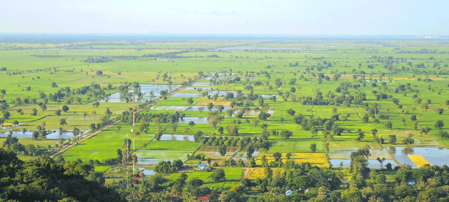 campagne Battambang paysage